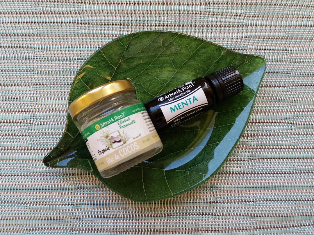 Beneficiile uleiului de cocos și de mentă | Arboria Plant