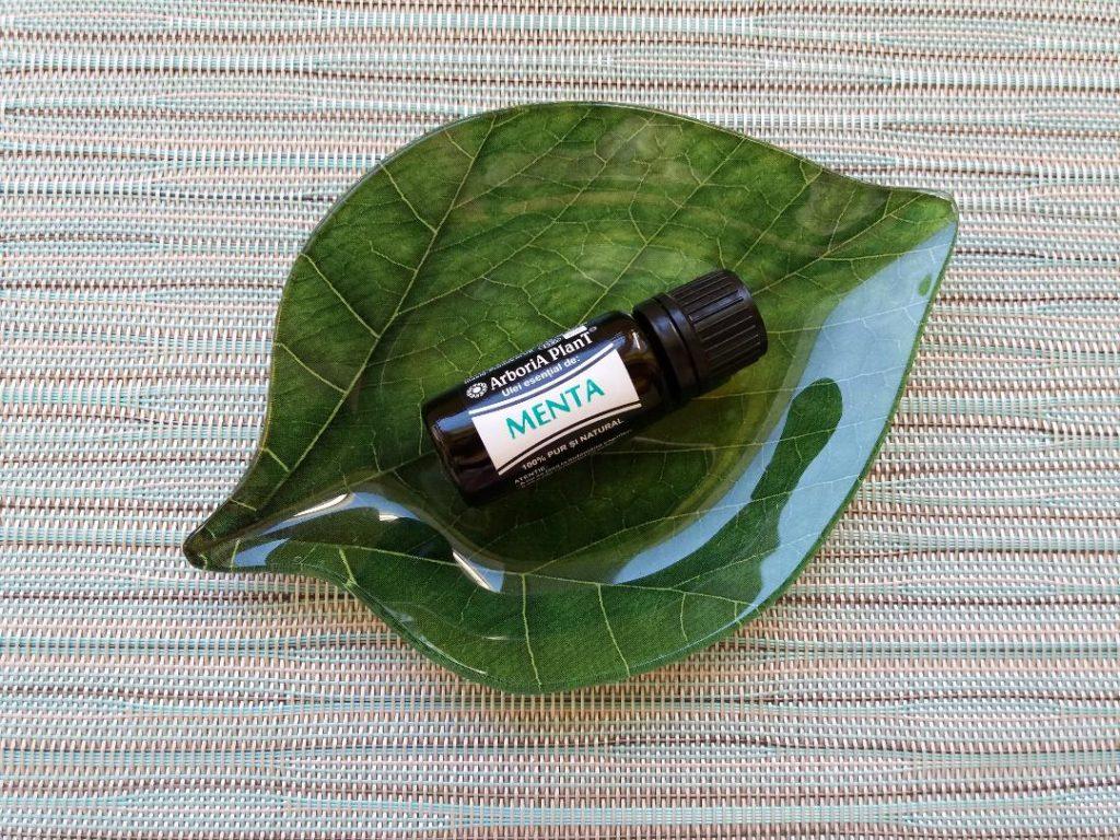 Arboria Plant